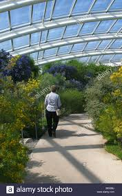 interior of the great glasshouse national botanical garden wales