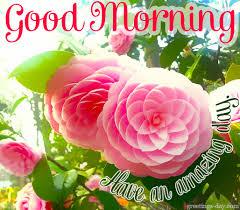 morning greetings pics http greetings day