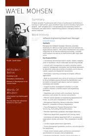 Sample Software Developer Resume by Sample Software Developer Resume Term Paper On Fiber