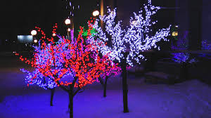 bright multicolored glowing led trees part of the