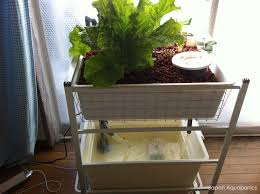 indoor mini aquaponics system ikea hack 5 steps with pictures
