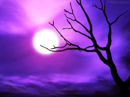 high resolution halloween images spooky halloween tree the purple store u0027s purple blog