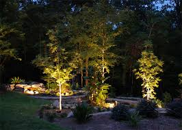 Landscape Lighting Ideas Trees Chic Inspiration Landscape Tree Lighting Trees Gardening Design