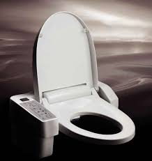 Bidet Toilet Seat Review Bidet Toilet Seat Reviews 2015 With Bidet Toilet Seat For Elderly