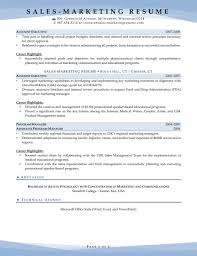 promotional resume sample resume samples for sales and marketing jobs business development