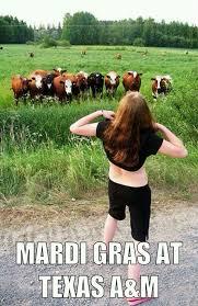 Texas A M Memes - mardi gras at texas a m weknowmemes
