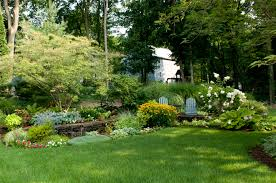 natural mosquito control mosquito proof your yard this year