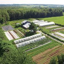 Urban Farm And Garden - market gardening how to make a living on 1 5 acres organic