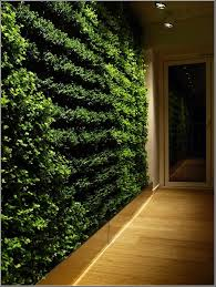 vertical plants for garden wall art ideas 2749 hostelgarden net