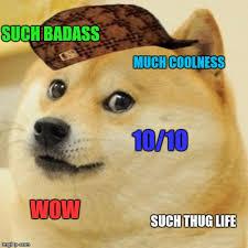 Such Meme - doge meme imgflip