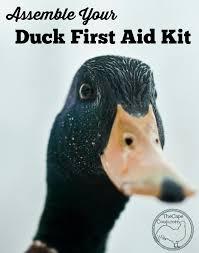 duck first aid kit u0026 duck health aid kit animal and farming