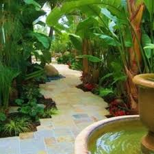 110 best florida gardens images on pinterest plants gardening