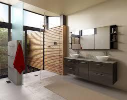 modern minimalist black cabinet on the cream wall bathroom laundry