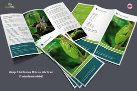 zoo brochure template trifold brochure 3 colors brochure templates
