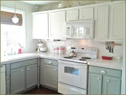 Laminate Kitchen Cabinet Makeover by How To Paint Oak Kitchen Cabinets Kitchen Decoration