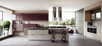 purple kitchens design ideas zamp co