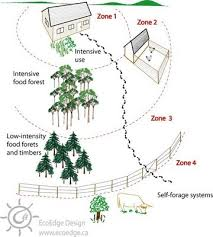 123 best permaculture images on pinterest gardening