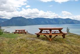 Wooden Picnic Tables With Separate Benches Round Wooden Picnic Table With Attached Benches