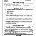 Resume Templates Professional Resume Templates Professional Free Resume Templates 20 Best