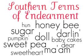 Southern Comfort New Paris Ohio Southern Terms Of Endearment It U0027s A Southern Thing Pinterest