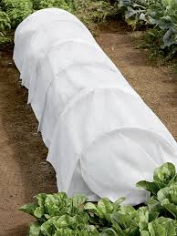 protect plants with row covers hgtv