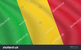 Marshallese Flag Waving Flag Mali Current National Flag Stock Vector 787879216