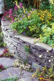 raised bed stone wall flower garden plant u0026 flower stock
