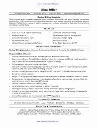 insurance resume exles basic sle resume awesome insurance resume exles adjuster
