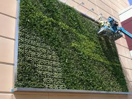 gorgeous living wall garden containers living wall istock photo
