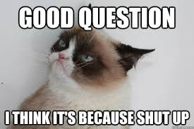 Mean Cat Meme - 50 shades of grumpy cat chap 58 as ns a better class of asexuality
