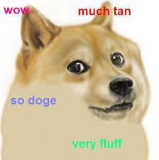 So Doge Meme - art realism doge doge meme this was amusing off to go fail school