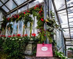 home design show toronto 2016 allan gardens christmas flower show 2016 jbipix a personal