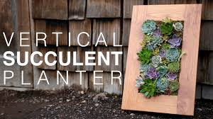 Garden Wall Planter by Grovert Living Wall Planter With Succulents Youtube