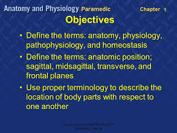 Human Anatomy And Physiology Terminology Anatomic Definitions 1 Introduce Chapter 1 Goals Ppt Download