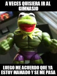 Memes Rana Rene - a veces quisiera ir al gimnasio rana rene meme on memegen
