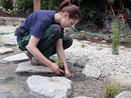 garten und landschaftsbau ausbildung berufenet berufsinformationen einfach finden