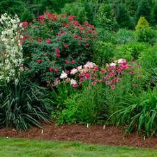 Raleigh Botanical Garden Juniper Level Botanic Garden Botanical Gardens 9241 Sauls Rd