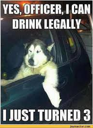 Driving Memes - law firm under fire after posting drink driving memes on facebook