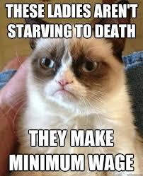 Cat Meme Ladies - these ladies aren t starving cat meme cat planet cat planet