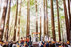 redwood forest wedding venue amphitheatre of the redwoods pema osel santa