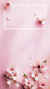 Cherry Blossom Facts 42 best spring design inspirations images on pinterest spring