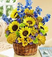 port orange florist for him flowers delivery port orange fl port orange florist
