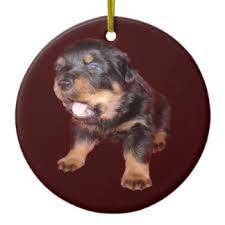 puppy rottweiler ornaments keepsake ornaments zazzle
