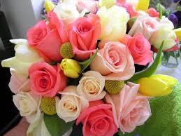 florist knoxville tn always in bloom florist llc knoxville tn