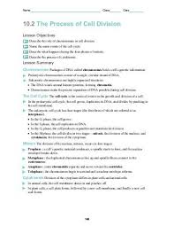 cellular transport and the cell cycle worksheet free worksheets