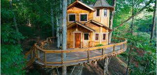 5 Amazing Tree house Accommodations from Around the World  Travel