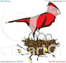 cartoon of a grinning red cardinal bird with folded arms royalty