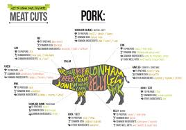 cuts of pork u2013 get to know the parts of a pig u2013 the official scott