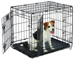 amazon com midwest life stages folding metal dog crate 24 inch