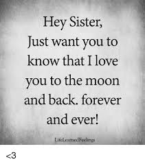 Hey I Love You Meme - hey sister just want you to know that i love you to the moon and